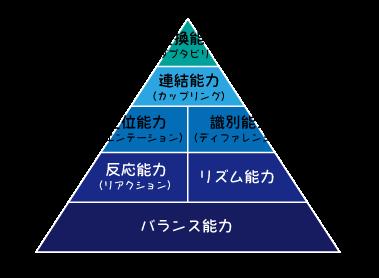 コーディネーションピラミッド