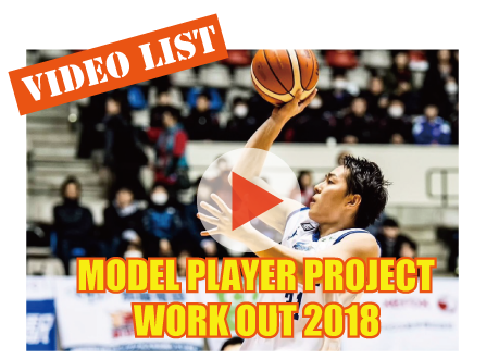 model-player-project_video2017